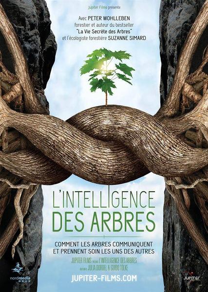 intelligence arbres